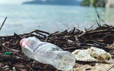 PRÁCE: Nový web Pirátů informuje o odpadech a oběhovém hospodářství, vříjnu ktématu proběhne odborný seminář